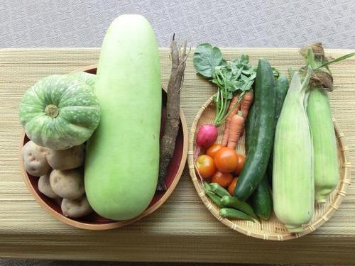 01お野菜.JPG